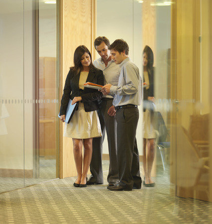 conferring: Business executives looking at documents
