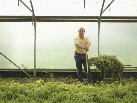 conservatories: Farmer Standing In Polytunnel