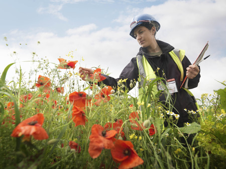 ecologist: Female Ecologist With Poppies LANG_EVOIMAGES