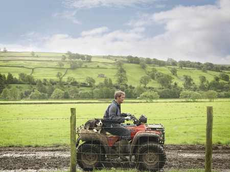 dirtied: Farmer And Dog On Tractor LANG_EVOIMAGES