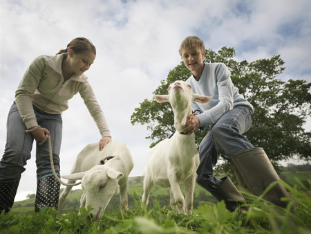 brotherly love: Boy And Girl with Goats LANG_EVOIMAGES