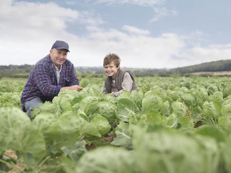 personas reunidas: Granjero e hijo en el campo de cultivo