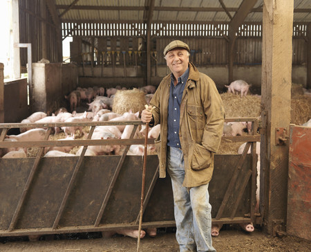 accomplishes: Farmer With Pigs