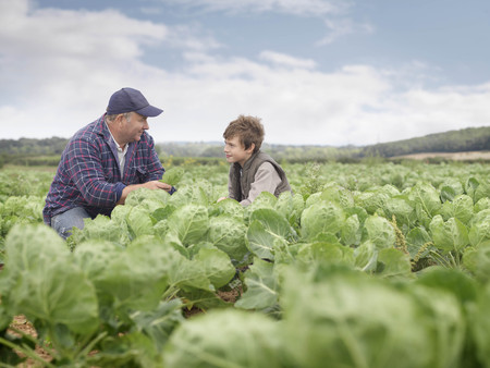 Farmer And Son In Crop Field LANG_EVOIMAGES