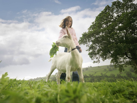 Girl Feeding Goat