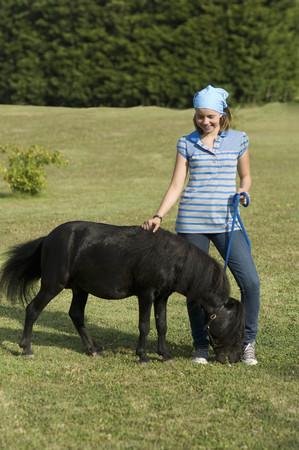 pursuing: Miniature horse running