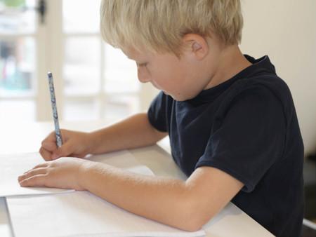 teaches: Boy 7 doing homework
