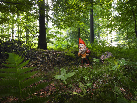 woodland sculpture: A Garden gnome in the woods LANG_EVOIMAGES