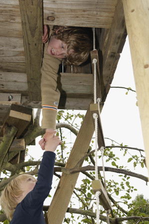 scaling ladder: Boy helping friend to treehouse