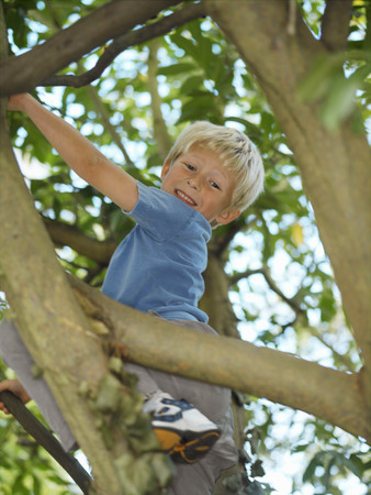 Boy, 7 playing in tree