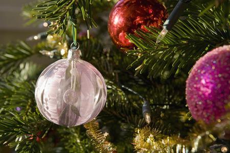 ahorcada: Decoraciones de Navidad y las luces en el árbol