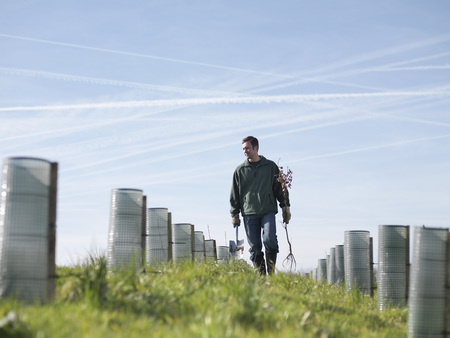 replenishing: Man In Field With Saplings LANG_EVOIMAGES