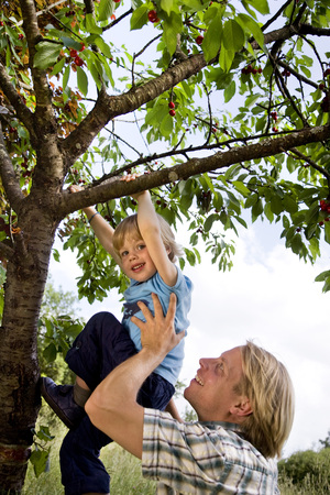 man helping son to climb tree