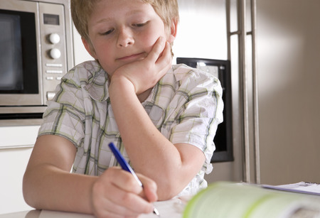 resolving: Boy 11, studying at home LANG_EVOIMAGES
