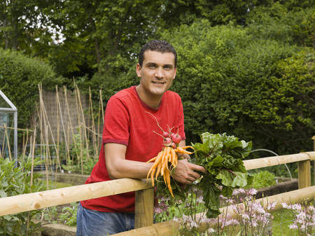 fulfill: Man in garden with vegetables LANG_EVOIMAGES