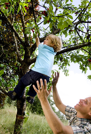 low spirited: man helping son to climb tree