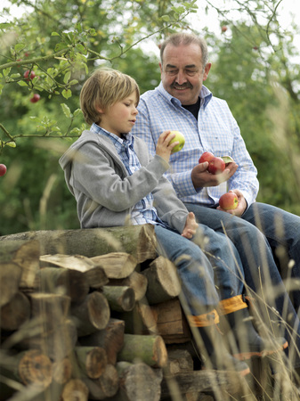 grampa: Man and boy with apples, sitting on logs LANG_EVOIMAGES