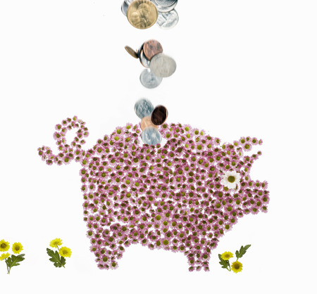 whimsy: A piggy bank made of flowers with money LANG_EVOIMAGES