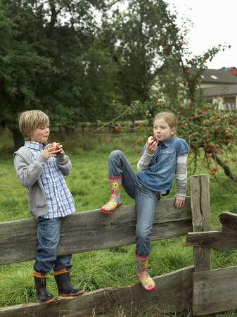 leaning by barrier: Girl and boy eating apples on fence