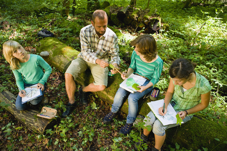 teacher and pupils at the wood LANG_EVOIMAGES
