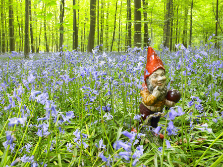 woodland sculpture: Garden gnome in the woods