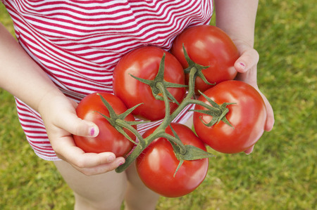 help section: young girl holding ripe tomatoes LANG_EVOIMAGES