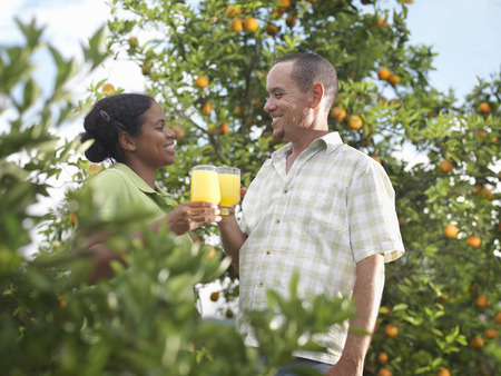 sipping: Couple In Orange Grove With Orange Juice