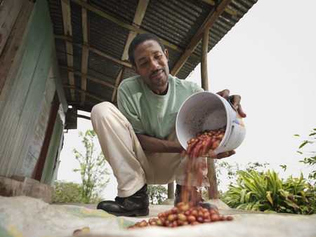 emptied: Coffee Worker With Coffee Beans LANG_EVOIMAGES
