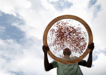 Worker Sieving Coffee Beans LANG_EVOIMAGES