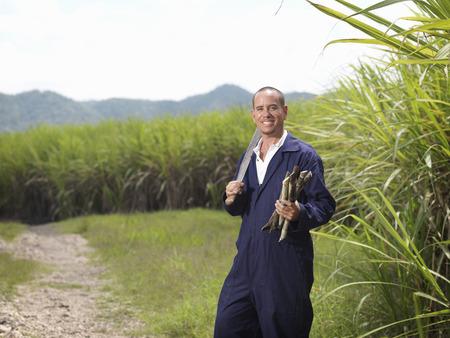 Worker With Harvested Sugar Cane LANG_EVOIMAGES