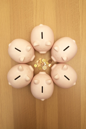 defended: piggy banks guarding coins