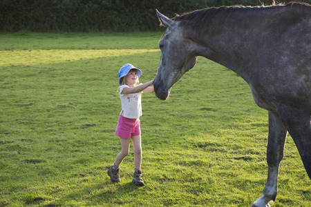 fondling: Petting the horse LANG_EVOIMAGES