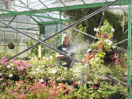 conservatories: Female Watering Plants At Garden Center