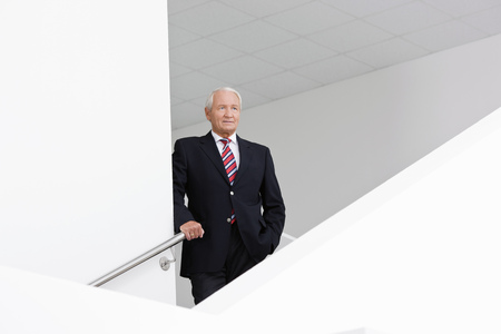 ceos: businessman on staircase