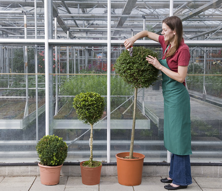 conservatories: woman caring for plant LANG_EVOIMAGES