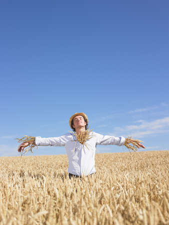 advances: scarecrow in wheat field