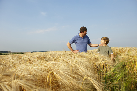 Father and son in a wheat field LANG_EVOIMAGES