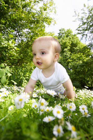 Baby boy in the daisies LANG_EVOIMAGES