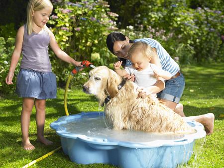 saturating: Mother, daughter and son washing the dog