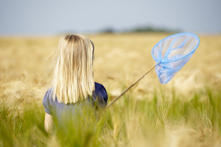 summers: Girl with butterfly net in a field