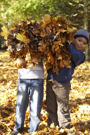 leafed: Autumn fun LANG_EVOIMAGES