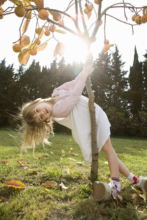 whimsy: Girl playing with tree