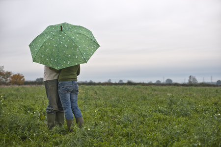 drizzling rain: couple under umbrella in field
