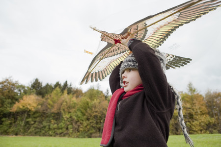 egglayer: Boy flies a kite