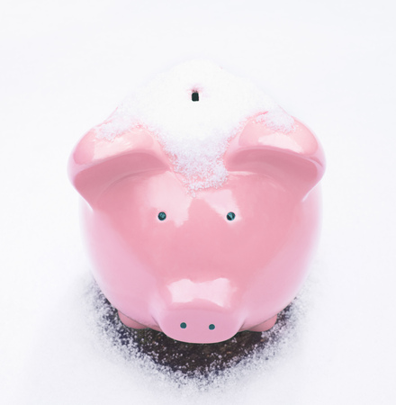 stagnation: Piggy Bank in Snow LANG_EVOIMAGES