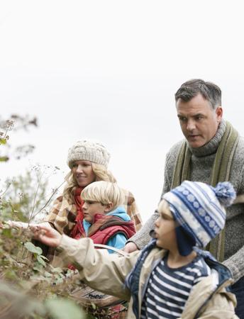 selections: Family picking blackberries