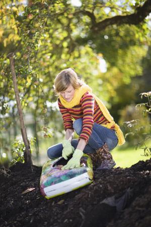 agachado: Jardinería otoñal