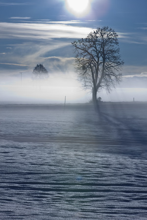 Landscape in winter LANG_EVOIMAGES