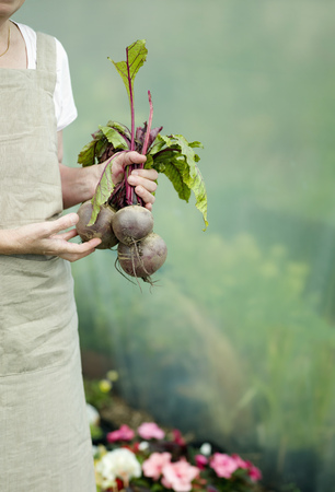advances: A female holding some Beetroots