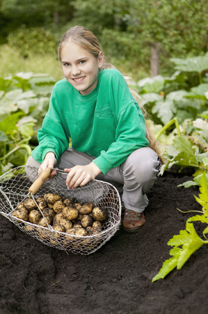 girl in full growth: Girl with harvest potatoes in a field